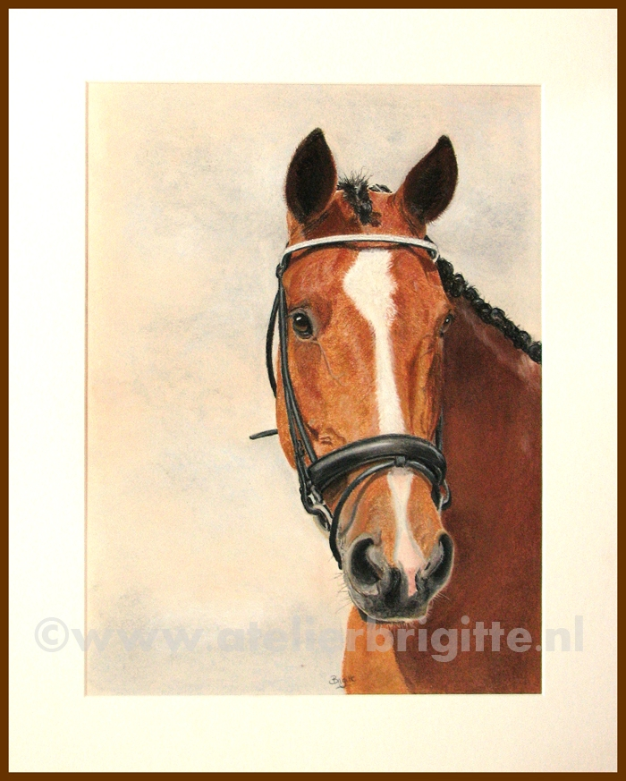paard okido pastel A3