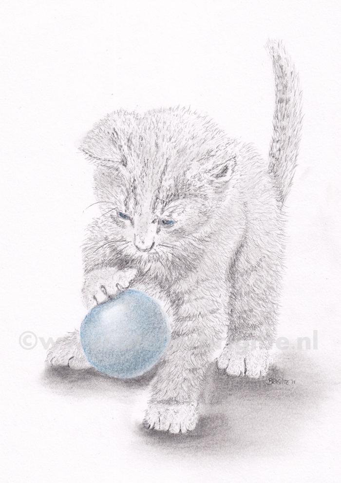 Kitten met bal | grafiet en kleurpotlood | A4 formaat