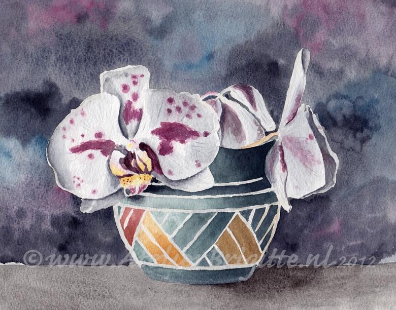 Orchideeën | aquarel | A4 formaat