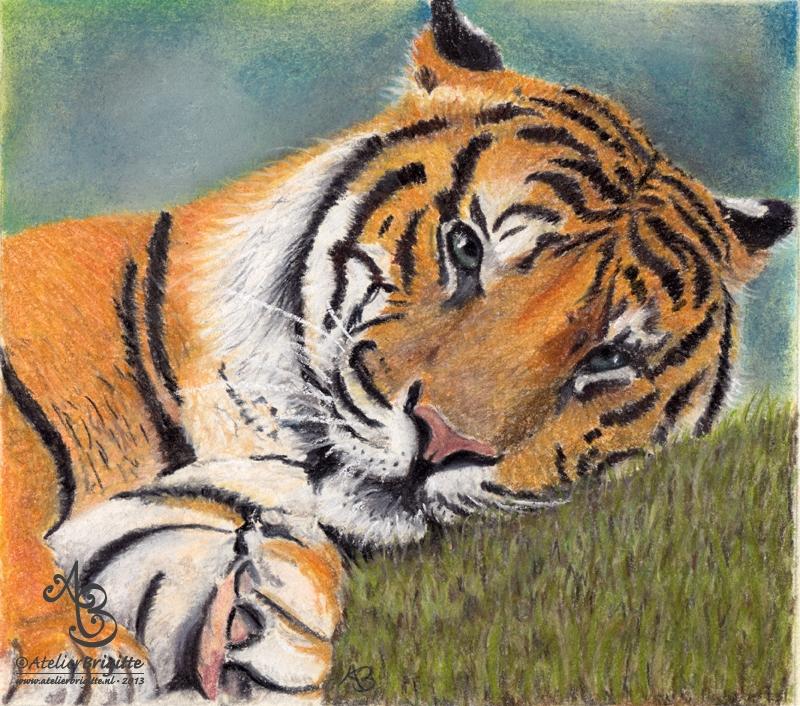 Tijger | pastel | 20 x 20 cm