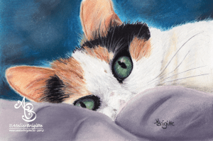 Willow, pastel, A5