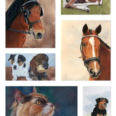 Uniek dierenportret, speciaal voor jou op maat gemaakt