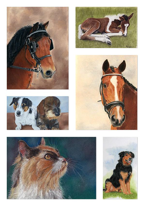 Uniek en persoonlijk dieren portret