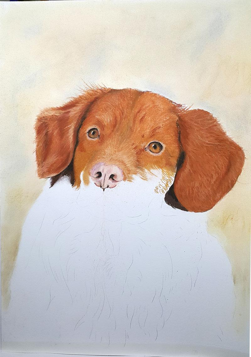 Hondenportret-Aiko-pastel-A3