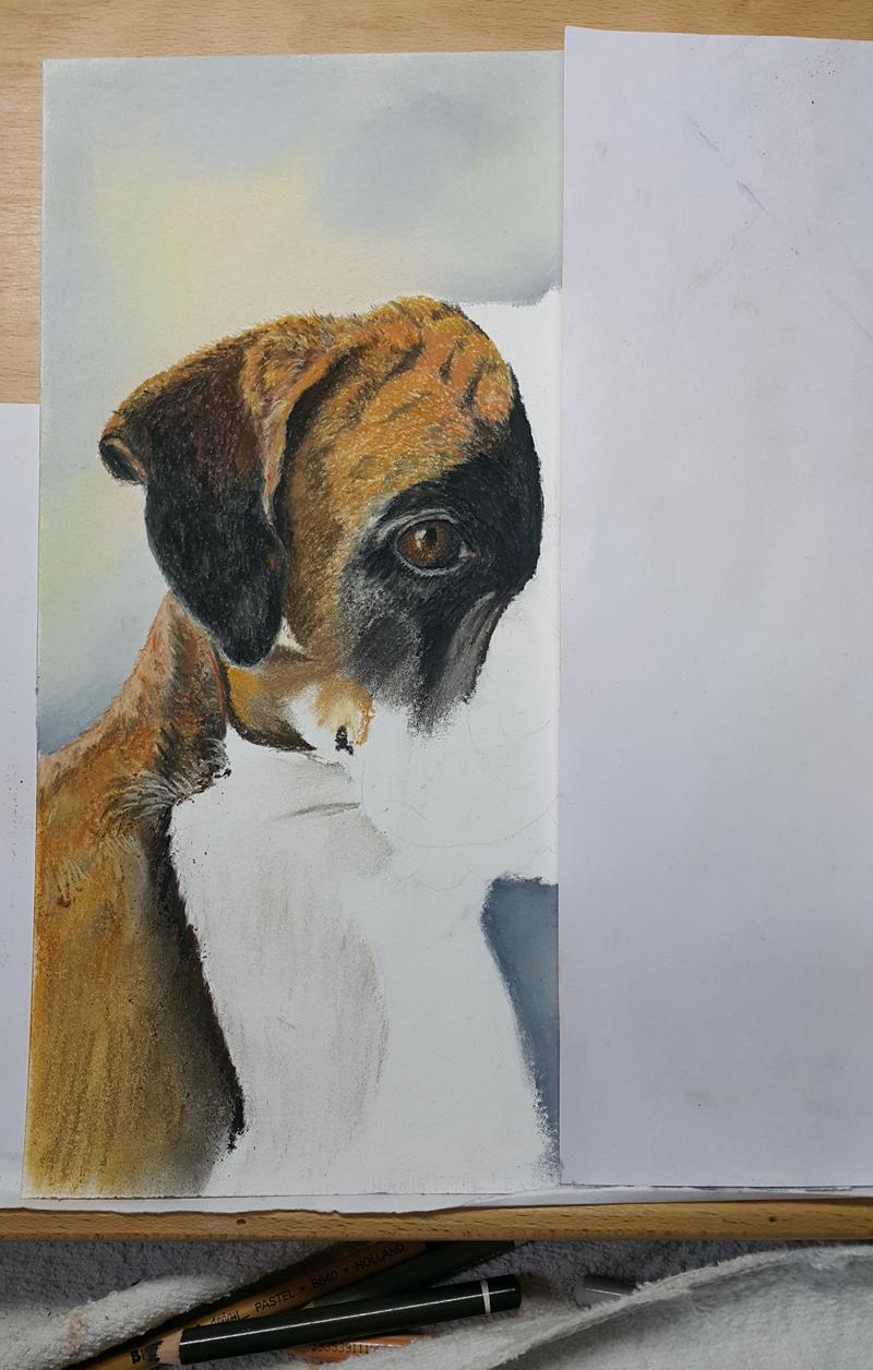 Stap 3 portret Hodel