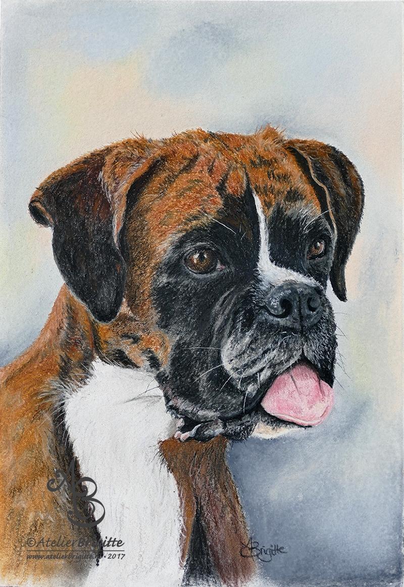 Portret Hodel, pastel, A4